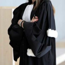 avocate-1.jpg